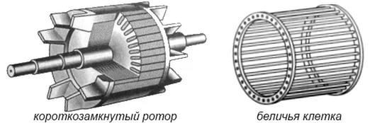 Короткозамкнутый ротор и беличья клетка